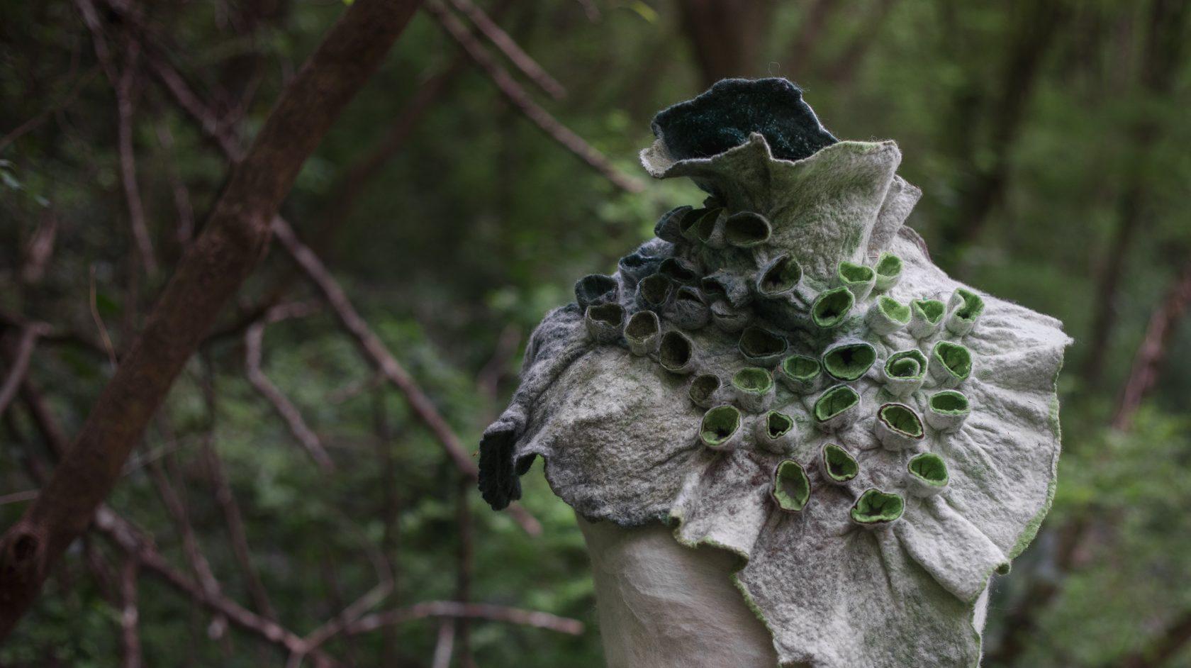 Art Eco / Šuma